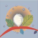 thumbnail of plaquette-chenille